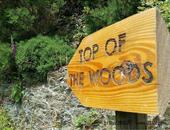 英国彭布罗克郡乡村型尊宝娱乐地Top of the Woods