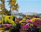 香山植物园定向穿越