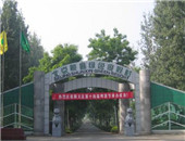 首届(北京)帐篷节即将开幕