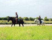 房车家族欧亚之旅 体验法国的乡土气息要深入乡村