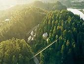 安徽有个酷酷的树屋营地 开房车住进山林间