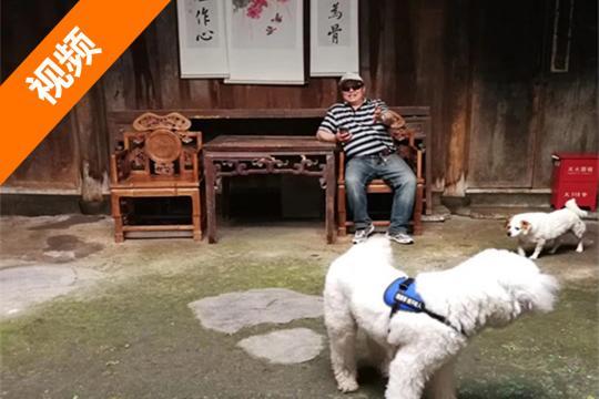 北京车友带两只狗房车旅行 4年玩了半个中国