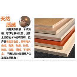 轻质免漆房车家具板